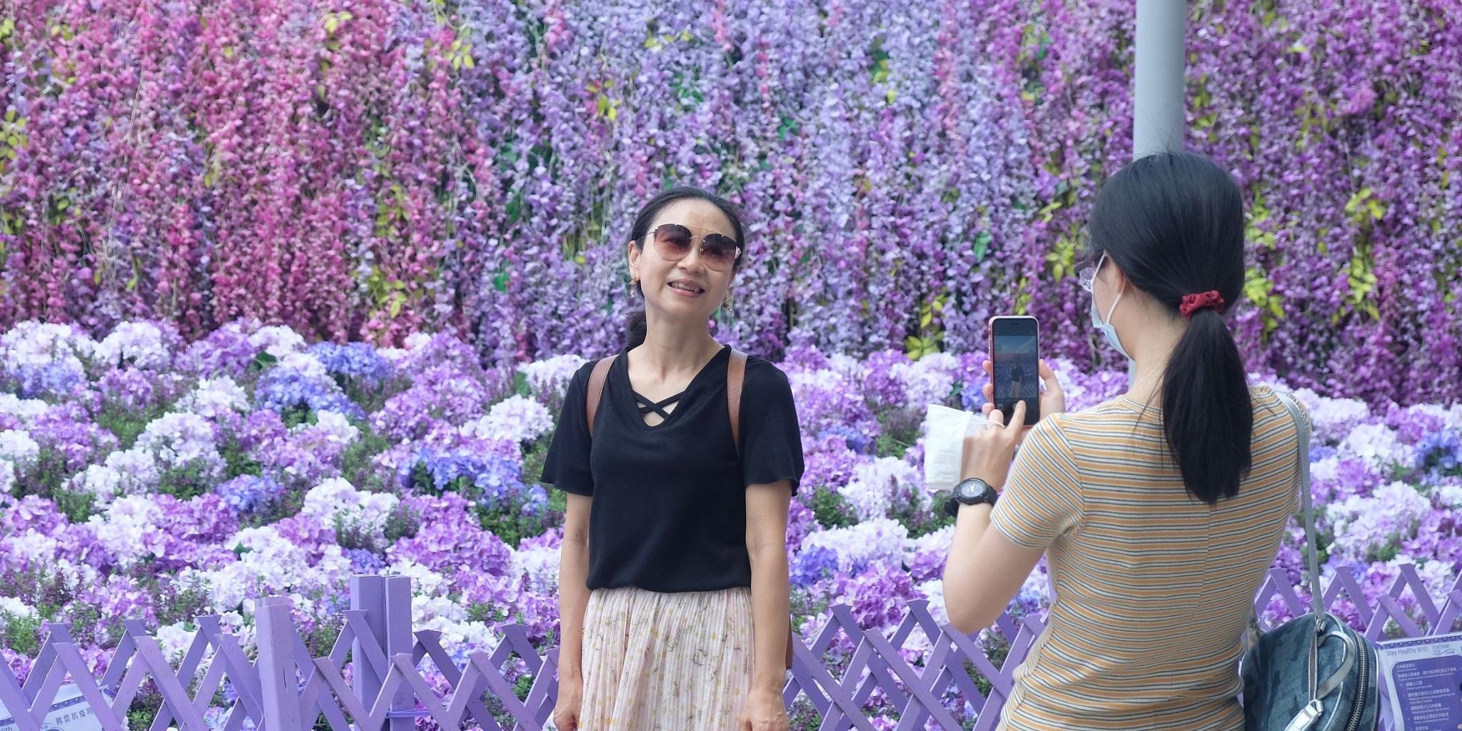 圖集|北角匯夢幻紫色樂園 3000呎花海任打卡