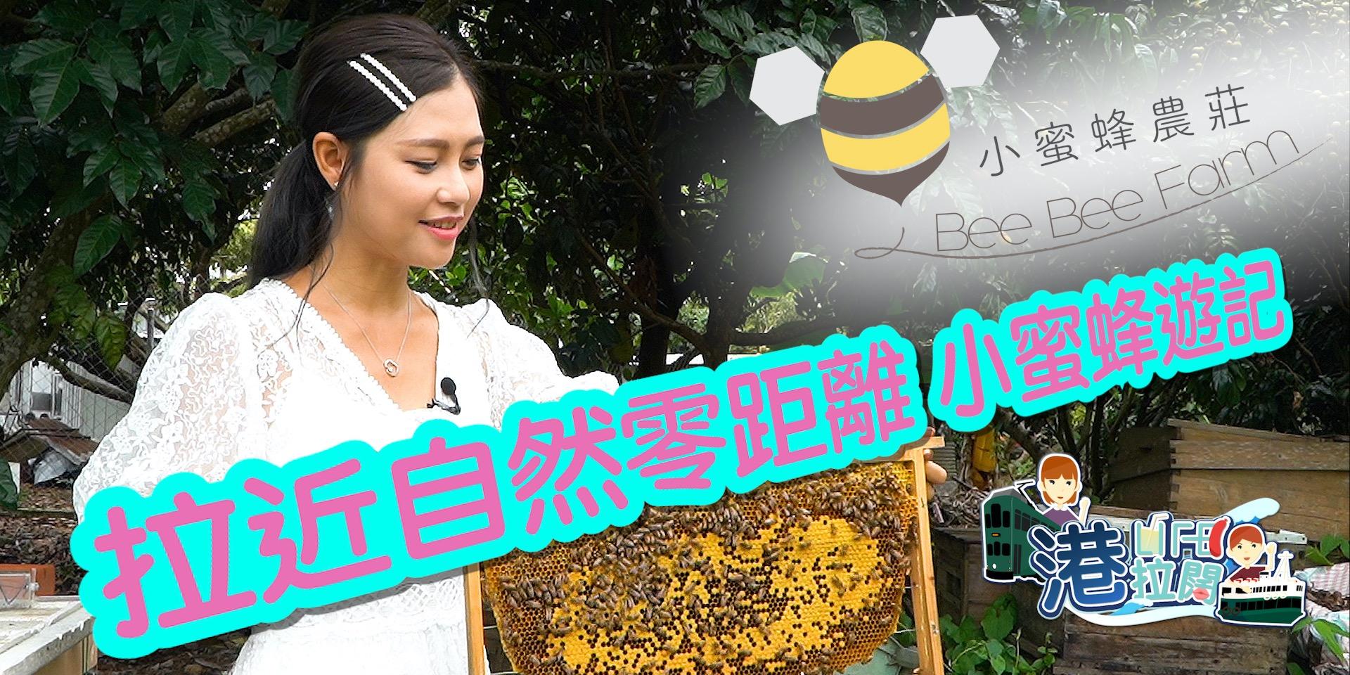 港・拉闊 Ep10 | 逃離繁囂好去處!讓人樂而忘返的小蜜蜂農莊