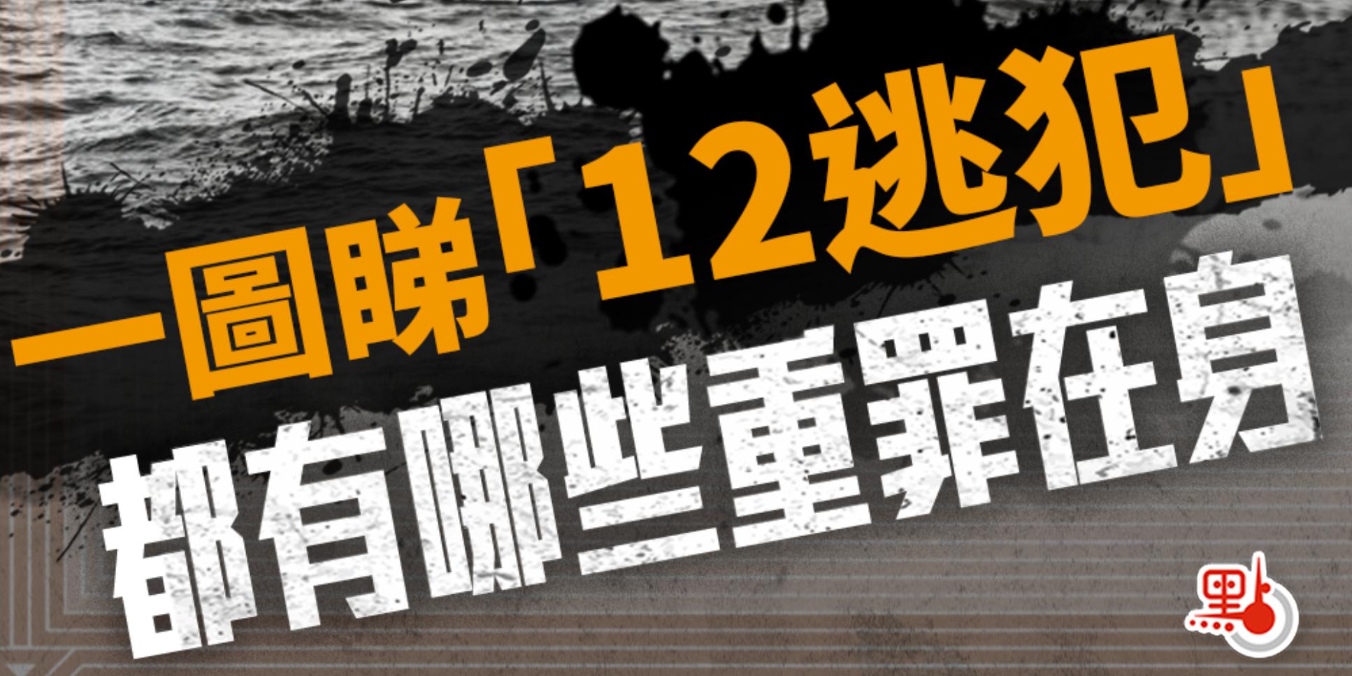 一圖睇「12逃犯」都有哪些重罪在身