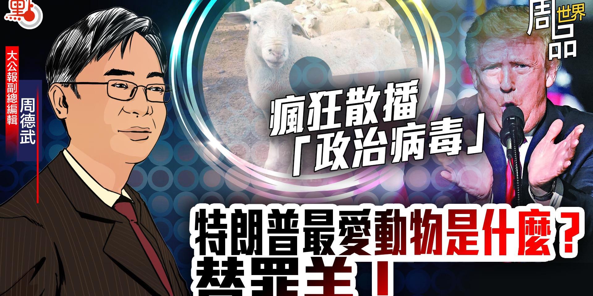 瘋狂散播「政治病毒」 特朗普最愛動物是什麼?替罪羊!【周品世界EP5】