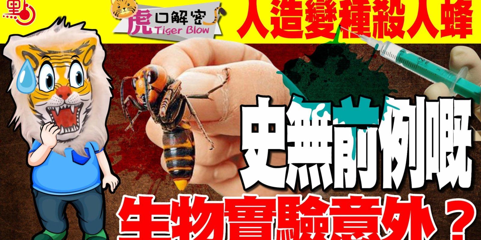 虎口解密|人造變種殺人蜂 史無前例嘅生物實驗意外?