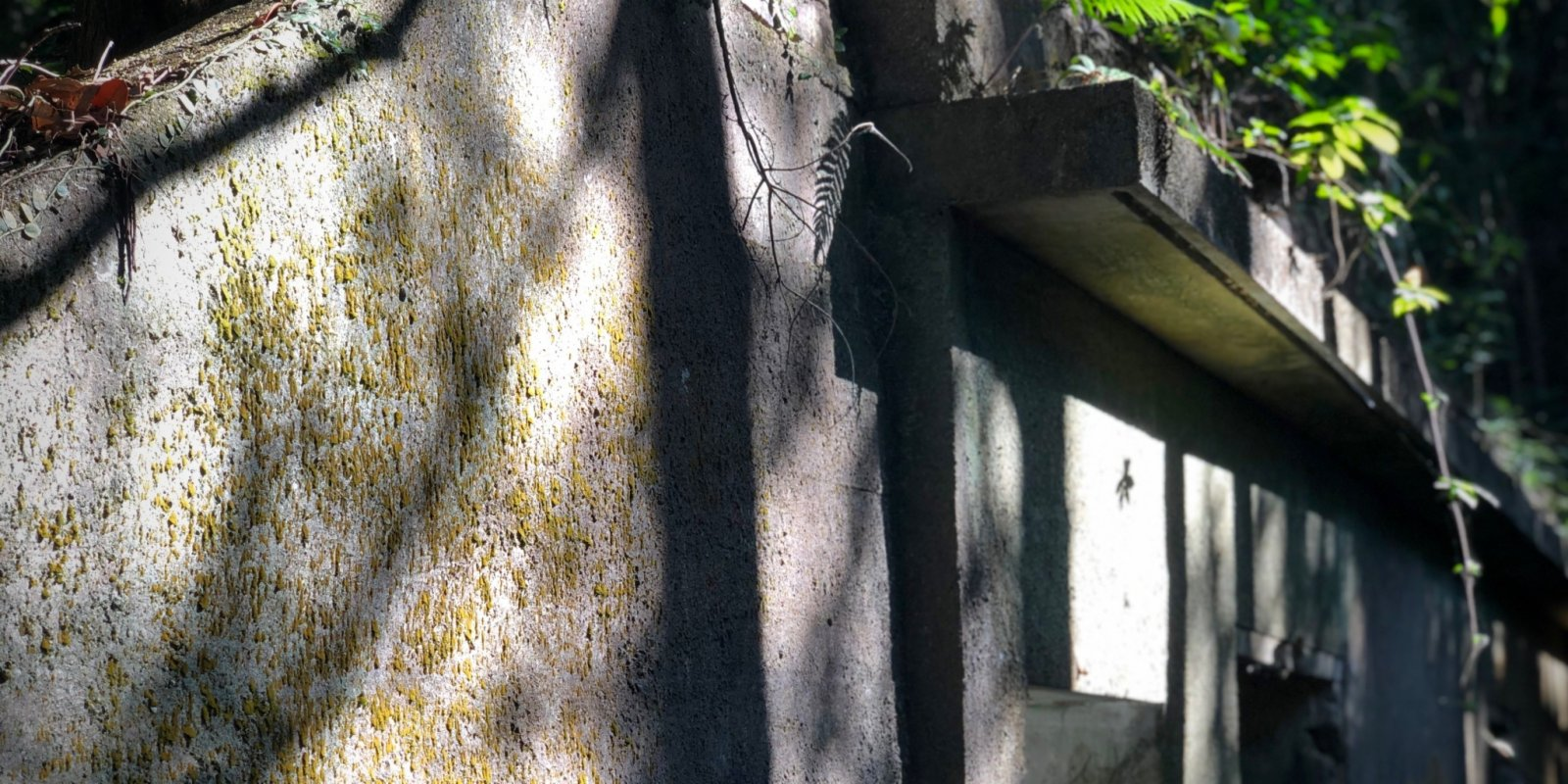 City Spotlight | Pinewood Battery Heritage Trail: A portal to another time