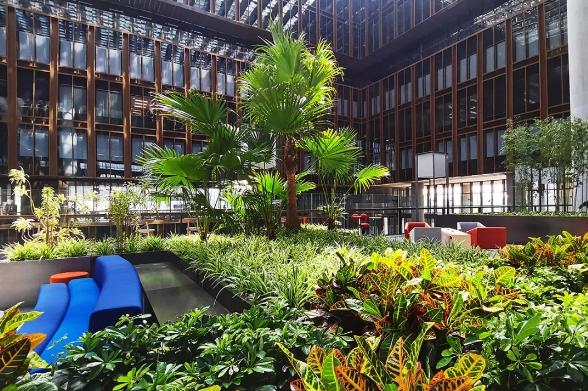 香港大學北京中心設在亞投行五層,室內空中花園種植多種熱帶植物,彷彿置身在自然之中,為工作、學習增添創意和靈感。