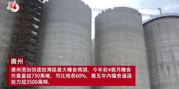 探訪華南最大糧倉 廣州港加快建設灣區最大糧食碼頭