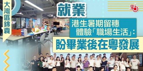 大灣區錦囊·就業 港生暑期留穗體驗「職場生活」:盼畢業後在粵發展