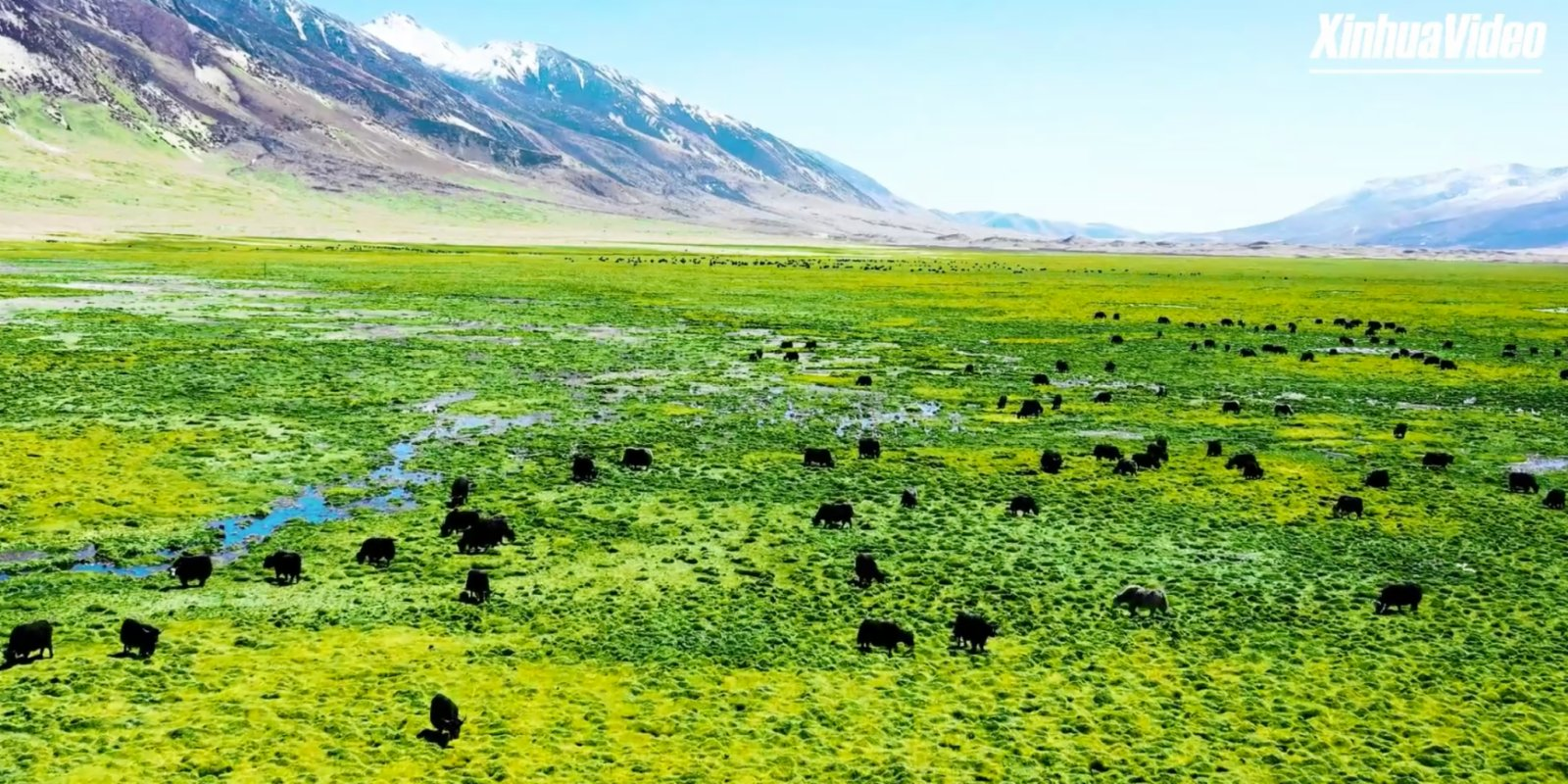 Watch This | 2nd Tibet Internet Photography & Video Festival awaits your participation